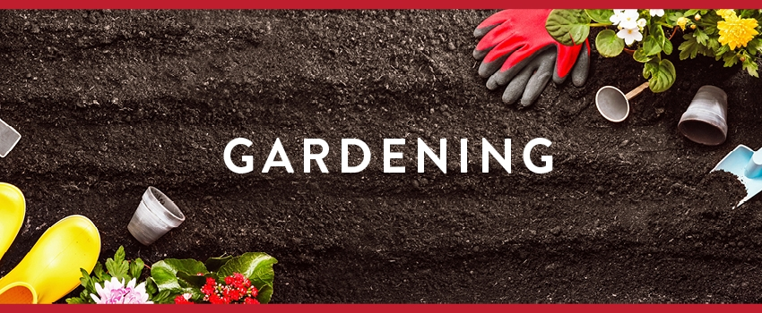 gardening, gardens, outdoor living